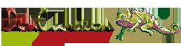 don-cameleon-logo